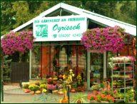 Blumenladen Ogrissek Holzhausen